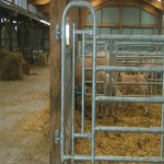cattle crush gates